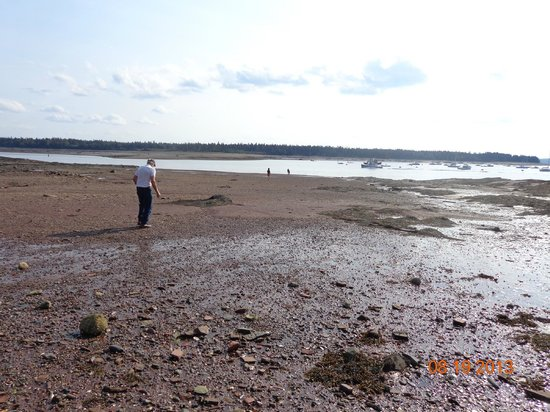 Seaside Beach Resort: Bay or Fundy low tide