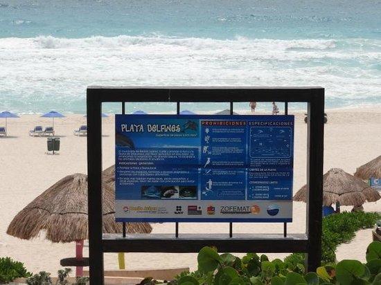 Playa Delfines : Jardim e choupanas