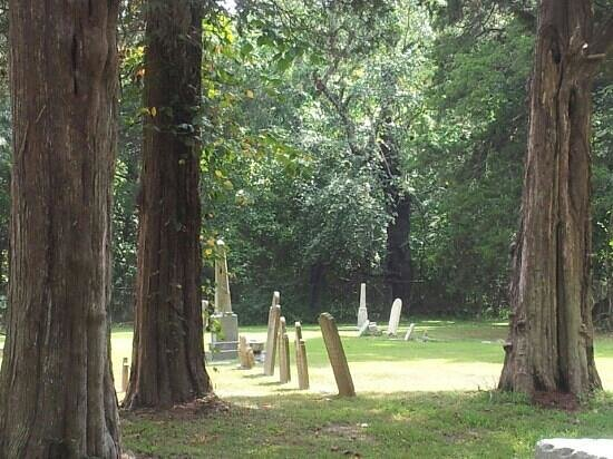 Denmark Presbyterian Church: Denmark cemetery