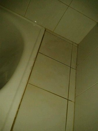 ATH Andarax Hotel : detalle juntas del baño