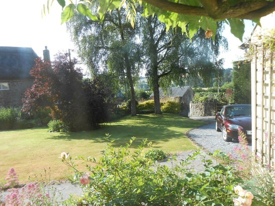 Parford Well Bed & Breakfast: Drive to the house.