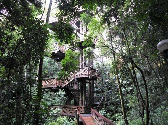 Bosque Alemão - Torre dos Filósofos - Mirante