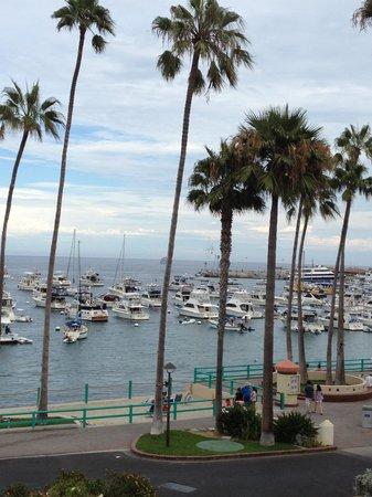 Portofino Hotel: View from roof