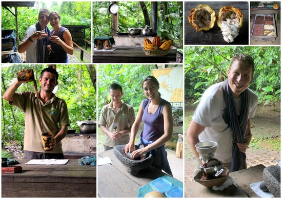 Tirimbina Lodge: chocolate tour / workshop