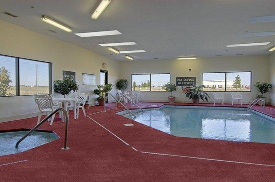 Red Roof Inn Troy: Pool