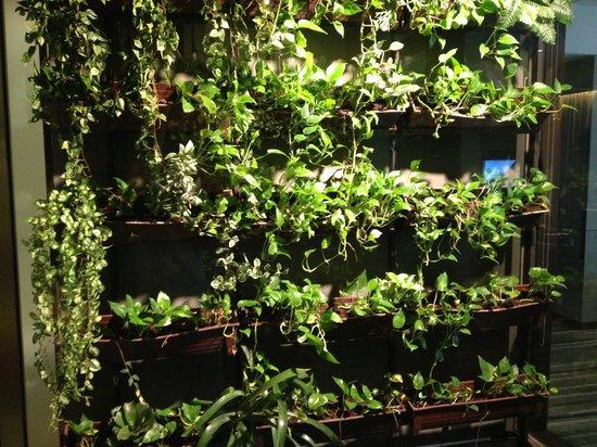 Hansar Bangkok Hotel: Mur végétal