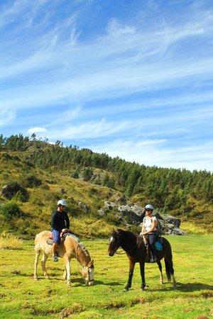 Green Peru Adventures : horseback riding in Cusco
