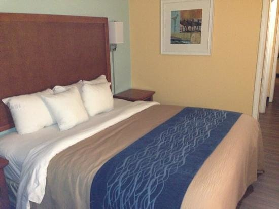 Comfort Inn & Suites Port Canaveral Area: king bed