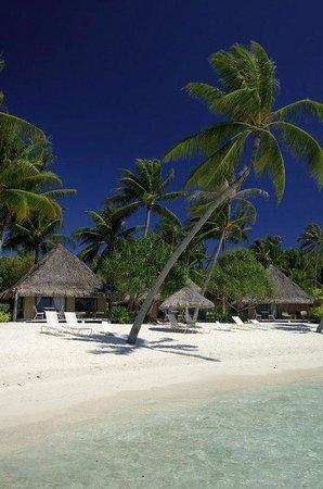 InterContinental Bora Bora Le Moana Resort: Beach Bungalows