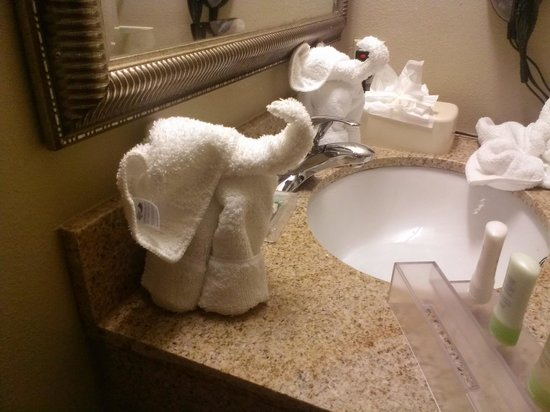 Country Inn & Suites by Radisson, Tampa East, FL : Isnt this just to cute lil elephants in the bathroom on the sink