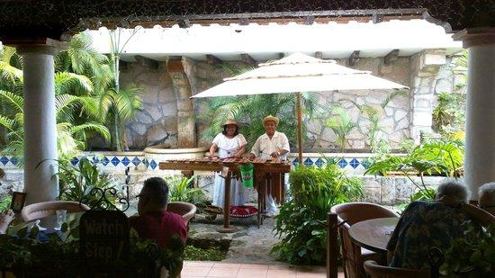 Pancho's Backyard: Another marimba picture!
