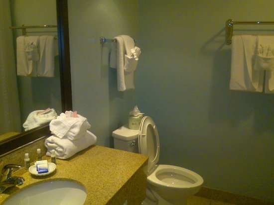 BEST WESTERN PLUS Myrtle Beach Hotel : Clean as a whistle!