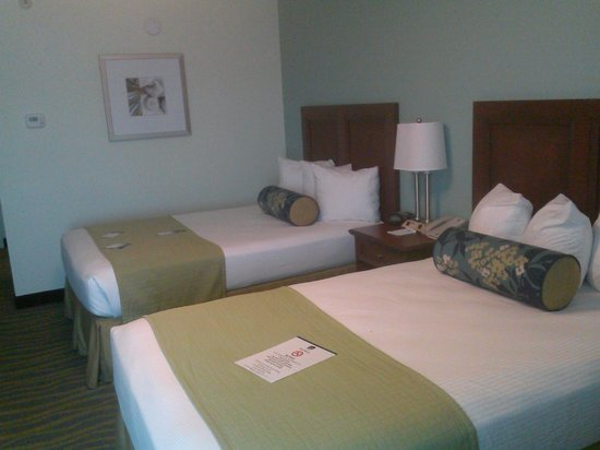 BEST WESTERN PLUS Myrtle Beach Hotel : Neat and lovely beds, very comfortable