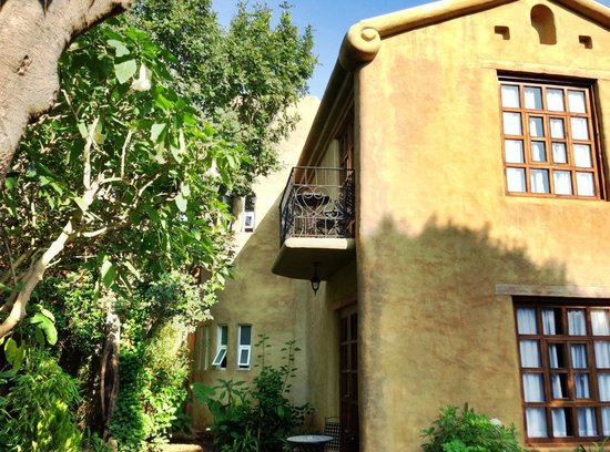 Guayaba Inn : Jardin