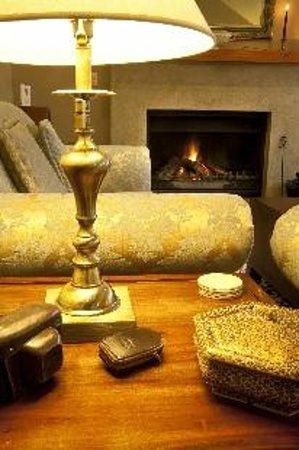 Whakaipo Lodge : Guest lounge