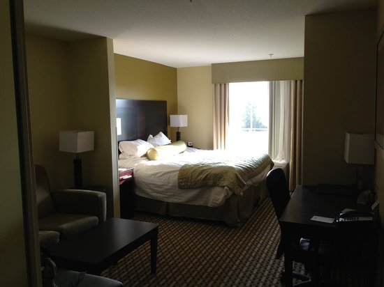 Best Western Plus Brunswick Inn & Suites: Room