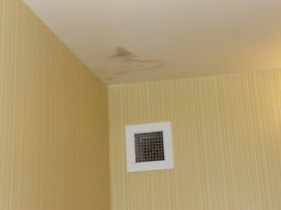 Carmel Mission Inn : mold growing in bath room