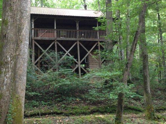 Cavender Creek Cabins Resort: Cabin # 4-rear view