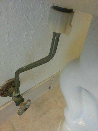 Extended Stay America - Jacksonville - Lenoir Avenue East: Behind Toilet