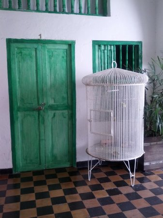 Hostel Green House Coffee Bar: Bird Cage and Room Door in Lobby