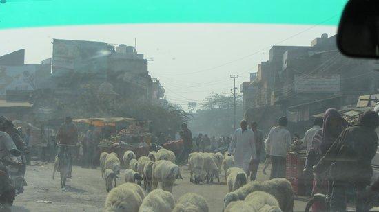 Hotel Clarks Varanasi: traffic local en sortant de l'aéroport