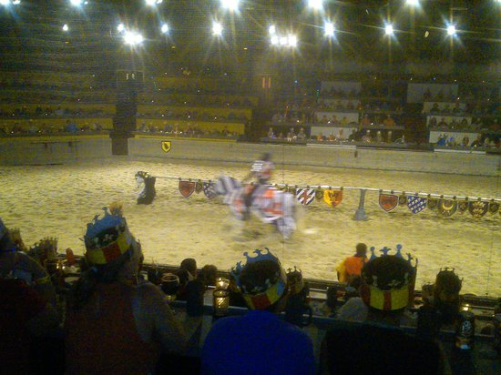 Medieval Times: The race of the knights