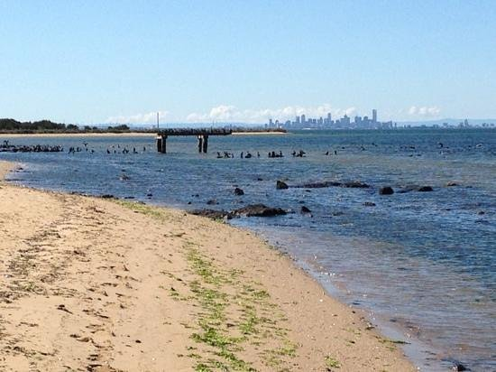 Point Cook Homestead: great view of the city from the beach