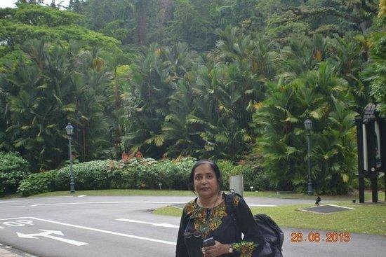 Au jardin restaurant singapur botanik bah eleri for Au jardin singapore wedding