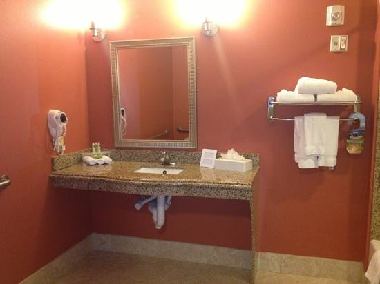 Holiday Inn Express Hotel & Suites Orlando South-Davenport: Accessible bathroom, SUPER CLEAN and spacious