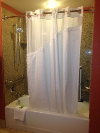 Holiday Inn Express Hotel & Suites Orlando South-Davenport: accessible shower