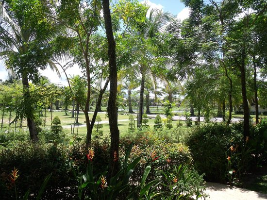 Angsana Villas Resort Phuket : View from the villa patio
