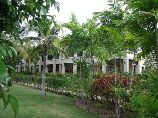 Angsana Villas Resort Phuket : Villas