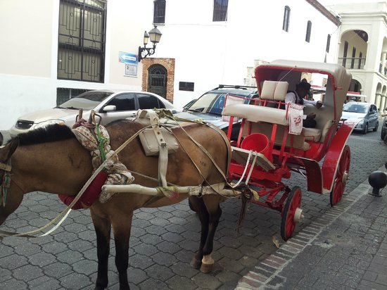 Hodelpa Caribe Colonial: paseo en carruaje por el casco colonial