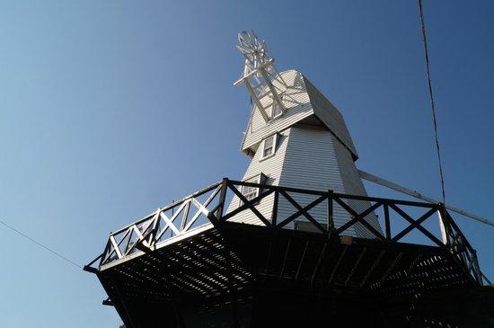 Rye Windmill B&B : View of The Windmill