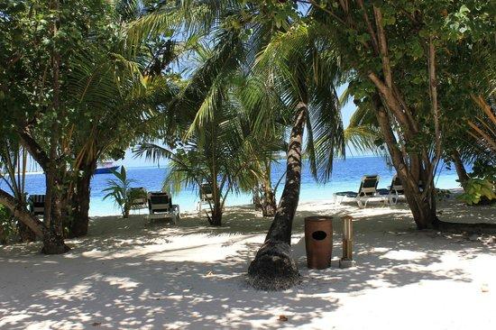 Vilamendhoo Island Resort & Spa: vista dede la habitacion