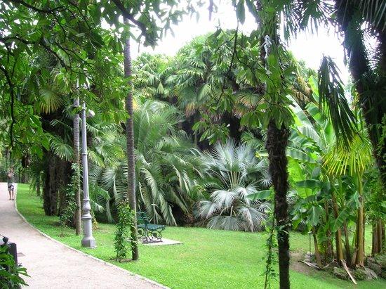 Arboretum of Arco
