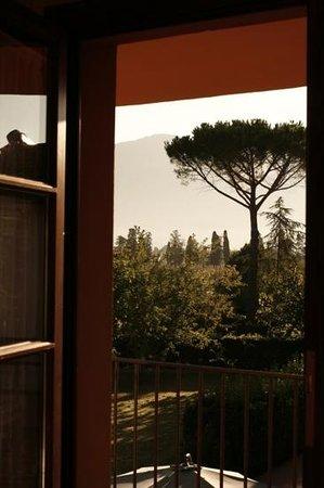 Airone Pisa Park Hotel : dalla mia camera. 31