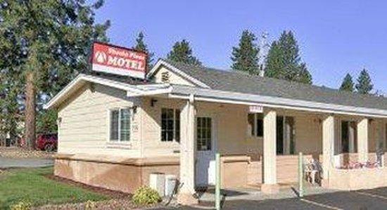 Shasta Pines Motel: Exterior