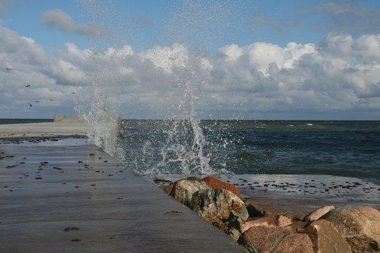The sea nera to Pavilosta Marina