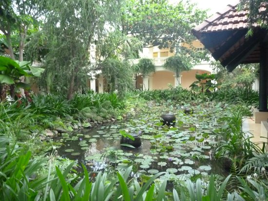 Anantara Hoi An Resort: かえるの合唱