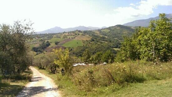 Campsite Rocca di Sotto: Veduta del campeggio
