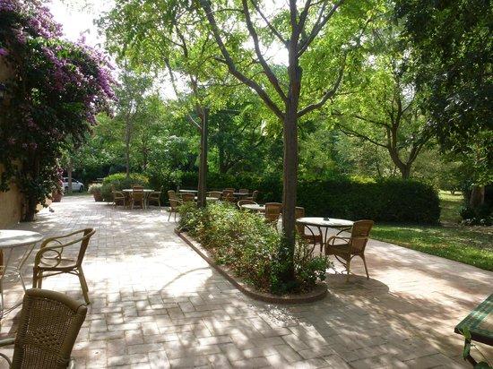 El Moli de Siurana: Jardín