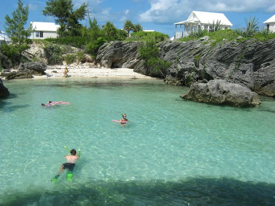 Bermuda Reef Explorer: The delightful Cove we snokelled in.