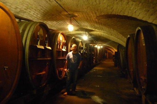 Cave historique des hospices civils de Strasbourg: Cave