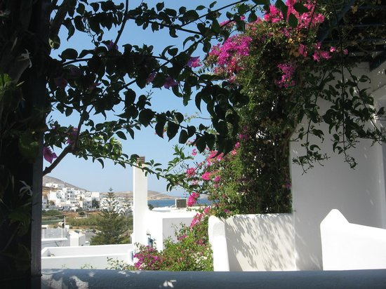 Pandora Rooms, Studios and Apartments: Bugnvillea garden and side sea view