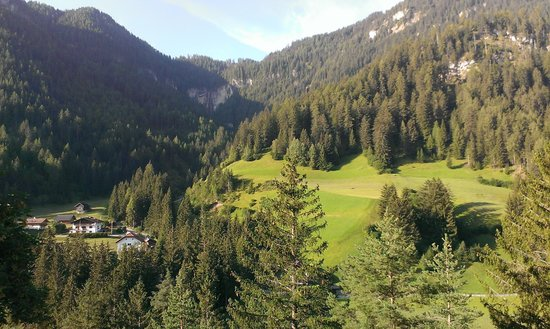 Chalet Hotel Hartmann - Adults Only: vista frontale dalla stanza