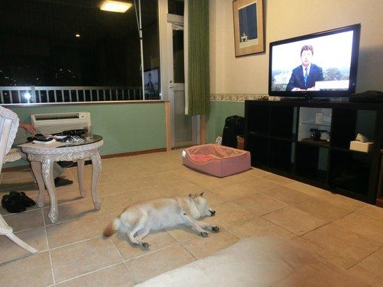 Dog Palace Resort Hakone: 広い洋室