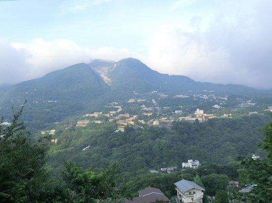 Dog Palace Resort Hakone: お部屋からの景色
