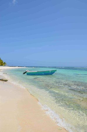Playa Mariposa : saona spiaggia del pranzo
