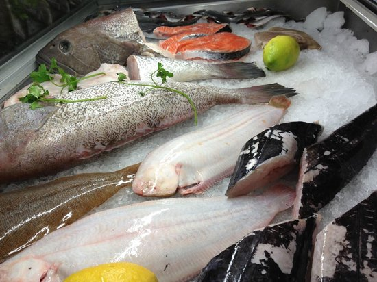 O Horacio: Fresh Fish
